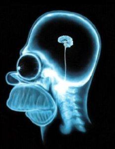 O que você tem no cérebro ?